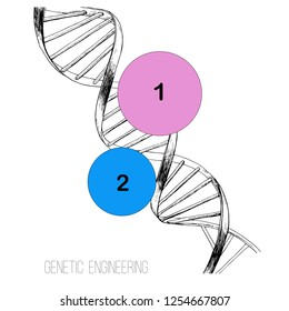 Vector illustration of hand drawn concept DNA spiral. Sketch 3d genome tehnology. Genetic engineering.