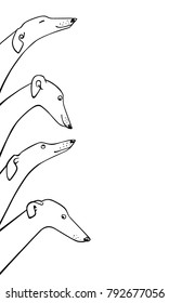 Vector illustration of hand drawn greyhound dogs. Beautiful design elements, ink drawing, funny illustration of cute dogs