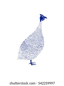 Vector illustration of hand drawn guinea fowl. Beautiful ink drawing, cute animal character
