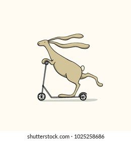 Vector illustration of hand drawn hare riding a scooter. Ink drawing, graphic style.