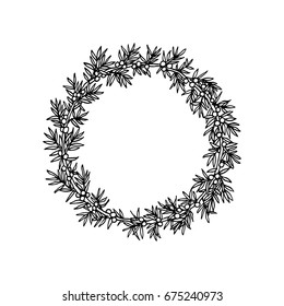 Vector illustration of hand drawn juniper wreath. Beautiful floral design elements.