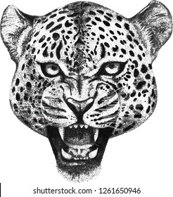 Vector illustration hand drawn of leopard head pointilis doodle mascot