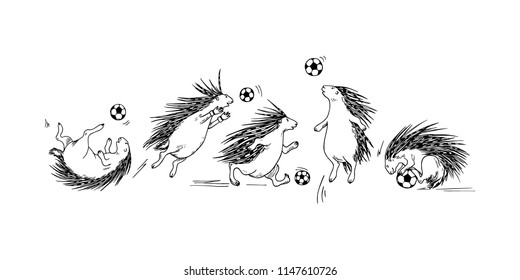 Vector illustration of hand drawn porcupines playing football. Beautiful ink drawing, funny sport illustration