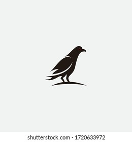 Vector illustration of hand drawn ravens sitting on a branch. Ink drawing, graphic style. Beautiful design elements