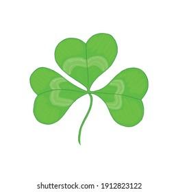 Vector illustration of hand drawn shamrock leaf isolated on white background. Saint Patrick`s Day symbol