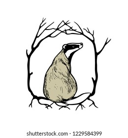 Vector illustration of hand drawn sitting badger in wreath of tree branches. Beautiful ink drawing, vector emblem