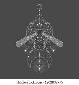 Vector illustration with hand drawn wasp and Sacred geometric symbol on black vintage background. Abstract mystic sign. White linear shape. For you design: tattoo, print, posters, t-shirts, textiles.