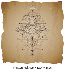 Vector illustration with hand drawn wasp and Sacred geometric symbol on vintage paper background with torn edges. Abstract mystic sign. Sepia linear shape. For you design: tattoo, print, posters.