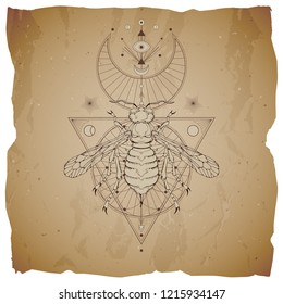 Vector illustration with hand drawn wasp and Sacred geometric symbol on vintage paper background with torn edges. Abstract mystic sign. For you design: tattoo, print, posters, t-shirts, textiles.