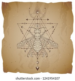 Vector illustration with hand drawn wasp and Sacred geometric symbol on vintage paper background with torn edges. Abstract mystic sign. Sepia linear shape. For you design.