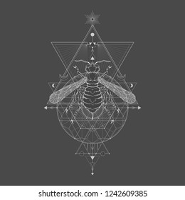 Vector illustration with hand drawn wasp and Sacred geometric symbol on black vintage background. Abstract mystic sign. White linear shape. For you design: tattoo, print, posters, t-shirts.
