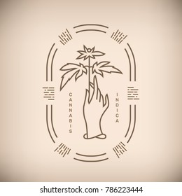 Vector illustration of hand with medical marijuana plant and Cannabis, Indica words on beige background.