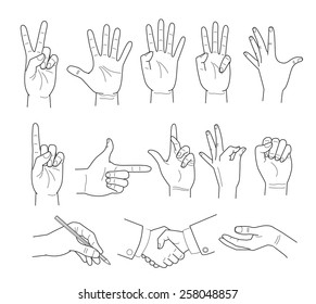 Vector Illustration of hand on white background