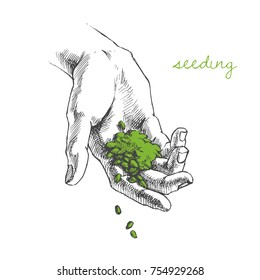 Vector illustration of hand planting seeds  Handful of grains. Sketch style