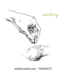 Vector illustration with hand puting seed to ground. Process of seeding in sketch style