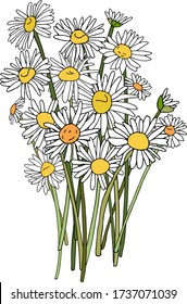 Vector illustration, hand-drawn graphics, a bouquet of charming white daisies, camomiles, colorful. Summer blooming, flowering. For a wedding invitation, for a holiday