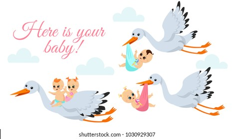 Vector illustration of happy flying storks with newborn babys. Stork birds carrying babyboy and babygirl in bags in cartoon flat style.