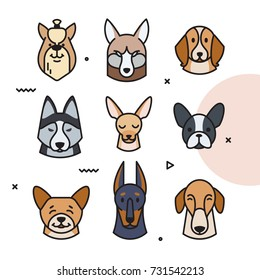 Vector illustration of a head of different breeds of dogs. Dog character can be used as a sticker, logo. 2018 year of the dog.