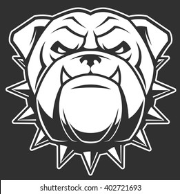 Vector illustration head ferocious bulldog mascot, on a black background