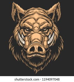 Vector illustration, the head of a ferocious wild boar, on a black background.