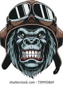 Vector illustration, the head of a gorilla wears a pilot's helmet, on a white background