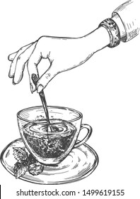 Vector illustration of healthy fresh drink. Delicate female hand stirring green or herbal tea with mint in cup. Vintage hand drawn style.
