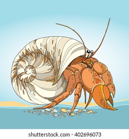 Vector illustration of Hermit Crab in the round gastropod shell on the blue background. Underwater crustacean in contour style.