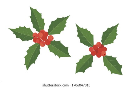 Vector Illustration | Holly berry, Christmas leaves and fruits icon