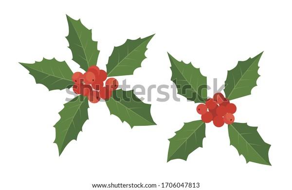 ベクターイラスト ホリーベリー、クリスマスの葉と果実のアイコン