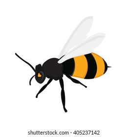 Vector illustration honey bee. Flying queen bee isolated on white background. Bee icon