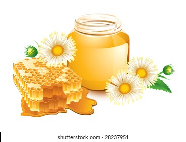 Vector illustration of honey and honeycomb