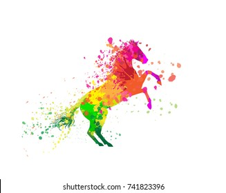 Vector illustration horse on white backdrop with colorful splashes.