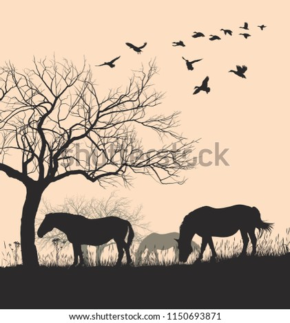 Vector illustration Horse silhouette on sunset background.