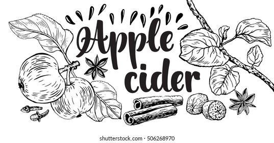 Vector illustration with hot drink Apple cider. Hand drawn apple and space ingredients. Hand lettering calligraphy.