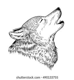 wolf drawings - Ataum berglauf-verband com