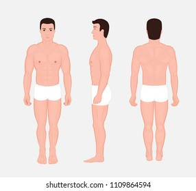 Vector illustration of a human body anatomy - front, back, side views of naked man in full growth in underwear. For advertising, medical publications. EPS 10.