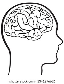 Vector illustration of a human brain with a profile head.