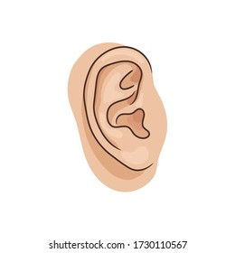 Vector illustration of human ear closeup on white background. Realistic style.