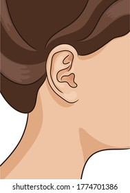 Vector illustration of human ear closeup with part of head and hair. Realistic style.
