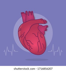 Vector illustration. Human heart anatomy. Organs symbol. Pulse line Realistic Heart icon.