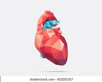 Vector illustration of human heart with faceted low-poly geometry effect