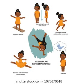 Vector illustration of human senses. Vestibular sensory system: sense of balance, maintaining head and body posture, direction and speed of movement, inner ear.