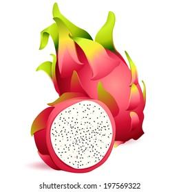 Vector Illustration Icon of Ripe exotic dragon fruit with slice