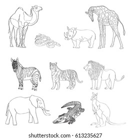 Vector illustration, the image of animals, animals. Black and white line. Elephant, kangaroo, camel, lion, zebra rhinoceros giraffe snake crocodile and tiger