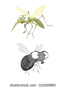 Vector illustration of a insect, fly and mosquito