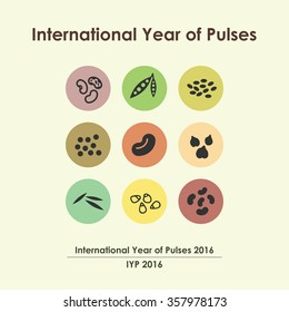vector illustration / international year of pulses