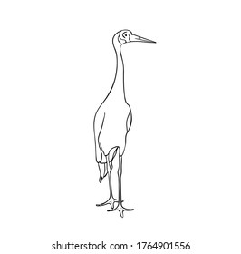 Vector illustration, isolated crane bird in black and white colors, outline original hand painted drawing