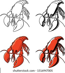 vector illustration of an isolated living  lobster rendered in four versions in black and white and color