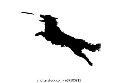 Vector Illustration of Isolated Real Looking Dog Jumping and Catching Disc. Silhouette on White Background.