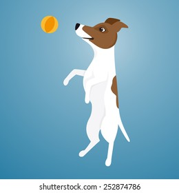 Vector illustration of Jack Russel Terrier jumping for ball.
